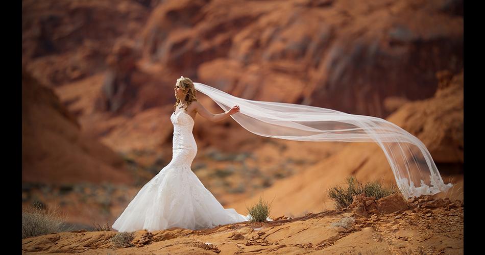 Wedding-Photography-Monterey